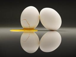 Webinar: Der FÜHRUNGSEIQ- wie Sie emotionale Führungsintelligenz