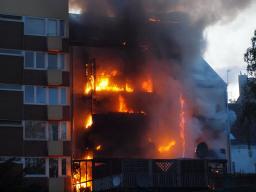 Webinar: Aufbau der Feuerwehr Domstadt