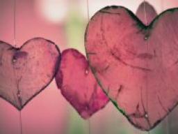 Webinar: Eine harmonische Beziehung leben