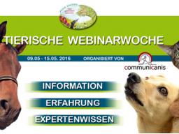 Webinar: Mykotherapie bei Tieren (Anne Sasson)