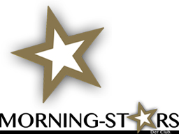 Webinar: Die Über-mich-Seite (ein Morning-Stars-Webinar)