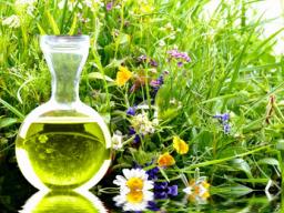 Webinar: Grundlagen der natürlichen Hormontherapie Teil I