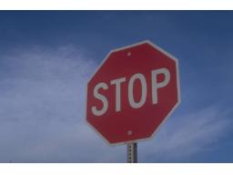 Webinar: Homöopathie bei Stress und Überforderung