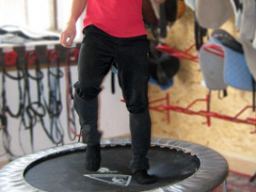 Webinar: Trampolin für Reiter - Centered Riding