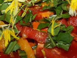 Webinar: Wildkräuter in unserer Ernährung - pflanzliche Säure-Basen-Balance
