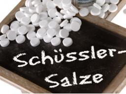 Webinar: Schüßler Salze bei Haustieren anwenden Teil 1