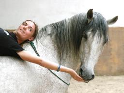 Webinar: Was ist Parelli Natural Horsemanship