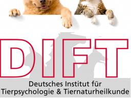 Webinar: Ausbildung Ganzheitlicher-Ernährungsberater für Hund & Katze inkl. B.A.R.F.