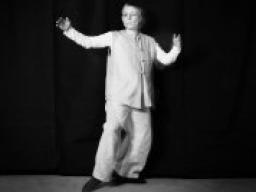 Webinar: Tai-Chi-GODO® Teil 4