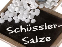 Webinar: Schüßler Salze bei Haustieren anwenden Teil 2