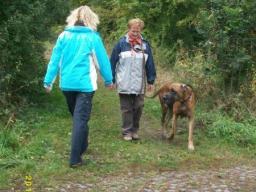 Webinar: Leinenaggression bei Hunden