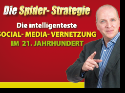 Webinar: Die Spider-Strategie - Intelligente Social-Media-Vernetzung