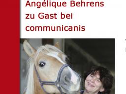 Webinar: Lehren Lernen | Referentin Angélique Behrens