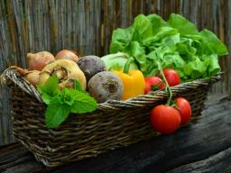 Webinar: Gesunde Ernährung Teil I