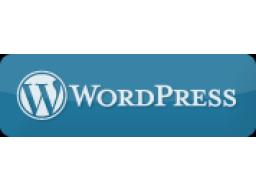 Webinar: Mit WordPress in 1 Stunde online