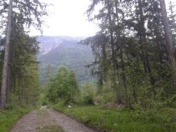 Webinar: Nordic Walking