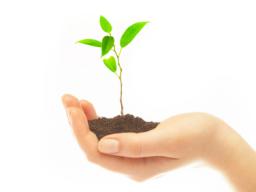 Webinar: Empfehlungen für Organisation und Ablauf eines nachhaltigen Bewerbungsgesprächs