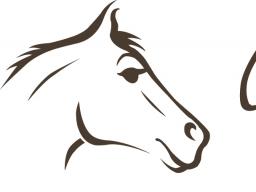 Webinar: Der Weg zu einer vertrauensvollen Pferd-Mensch-Beziehung
