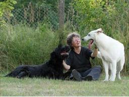 Webinar: Was hast du gesagt? Teil 2: Warum Hunde nicht hören, wenn Menschen zu viel reden