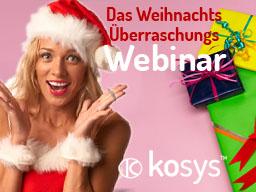 Webinar: Das große Weihnachts Überraschungs Webinar