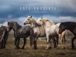 Webinar: Fotoprojekte planen, durchführen & vermarkten