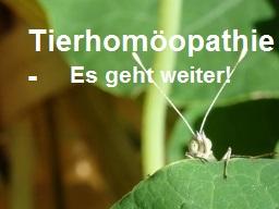 Webinar: Tierhomöopathie - AMB Natrium mur.
