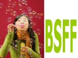 Webinar: Update von BSFF - die BSFF-Instruktion aktualisieren