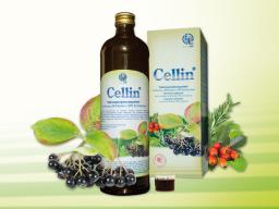 Webinar: Cellin® Die Vitalstoffbombe aus der Natur