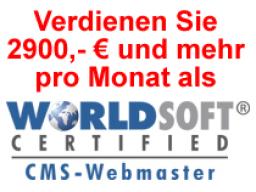 Webinar: Erfolg-Reich als Webmaster
