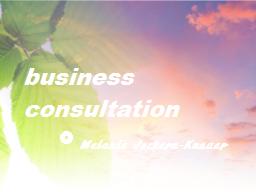 Webinar: Business und Erfolg - Einzel-Analyse und Lösungen (nach Terminvereinbarung)