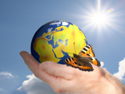 Webinar: Nachhaltigkeit, Lean- und Prozessmanagement