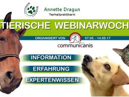 Webinar: Allergien beim Hund  (Annette Dragun)