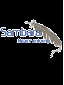 Sambara Naturmentoring Thomas Wittich