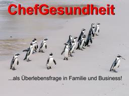 ChefGesundheit als Überlebensfrage in Familie und Business!
