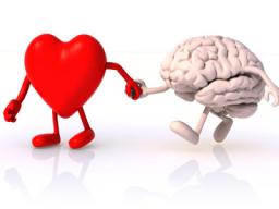 Webinar: Orientierungshilfen für strategische Projektleiter mit Herz & Verstand.
