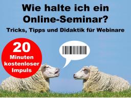 Wie halte ich ein Online-Seminar? - kostenloser Impuls