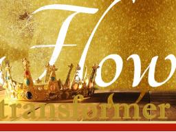 Webinar: Wunder-Transformation   7 Schritte zur hermetischen Transformation