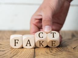 """Webinar: """"Fakes"""" in der Bilanzklausur der Steuerberaterprüfung?"""