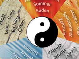 Webinar: Vortrag von Frau Li über TCM und das Magen-Milzsystem