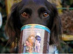 Webinar: Ausbildung zum Hundeernährungsberater Block II Fertigfutter
