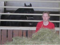 Webinar: Ausbildung zum Pferdeernährungsberater Block IV praktische Fütterung