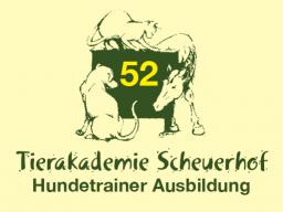Webinar: Hundetrainerausbildung 52 - Pflege des Hundes 2